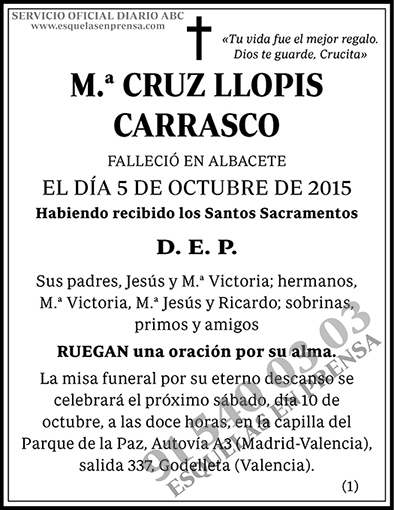 M.ª Cruz Llopis Carrasco